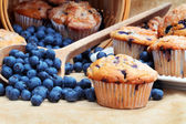 Blueberry Muffins — Foto de Stock
