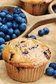 Borůvkové muffiny — Stock fotografie