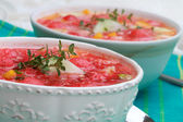 Watermelon Gazpacho — Stock Photo