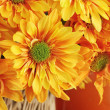 Autumn Bouquet — Stock Photo