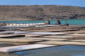 Salt-pans at Lanzarote — Stock Photo