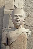 Estátua de amon — Foto Stock