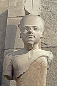 Statue d'amon — Photo