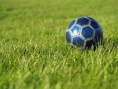 Blue Soccer Ball on Grass — Stock Photo
