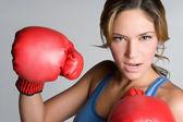 Rozzlobený boxer — Stock fotografie