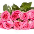 Bunch of pink roses — Foto Stock