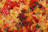 Fake colorful fall leaves — Stock Photo