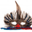 Royalty-Free Stock Photo: Feather mardi gras mask with colorful beads