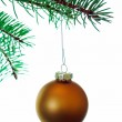 Gold Christmas Ball on branch — Stock Photo