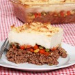 Shepards pie with a fork — Stock Photo