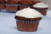 Chocolate cupcake with more in the background — Stockfoto