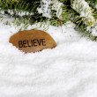 Snow with believe stone — Stock Photo