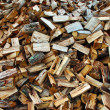 Wood Pile — Stock Photo
