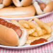 Hotdog and french fries with ketchup — Stock Photo