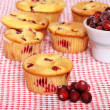 Lots of lemon cranberry muffins — Stock Photo