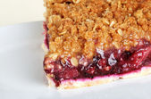 Macro fruit berry crumble pie — Stock Photo
