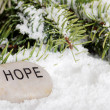 Hope stone in snow - Stock Photo
