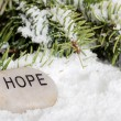 Hope stone in snow - Stockfoto