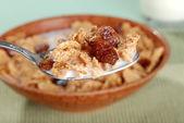Macro spoonful of bran and raisin cereal — Stock Photo