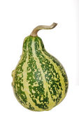 Yeşil kabak — Stok fotoğraf
