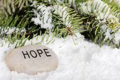 Hope stone in snow — Stock Photo