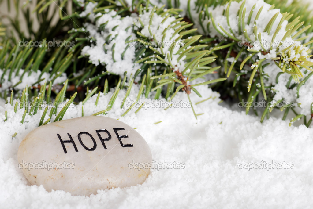 Hope stone in snow with a spruce tree branch  — Stock Photo #3807073