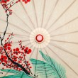 Oriental umbrella closeup — Stock Photo