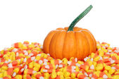 Pumpkin with candy corn — Stock Photo