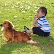Royalty-Free Stock Photo: Chinese child with a dog in the park watching