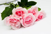 Pile of pink rose blossoms on white background — Stock Photo