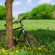 Bicyle — Stock Photo #3158027