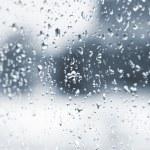 Rain — Stock Photo #2845514
