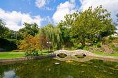 Park — Stockfoto