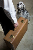 Man holding an old suitcase preparing to leave as his dog watches — Stock Photo
