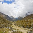 Trail in the Andes — Stock Photo
