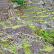 Stock Photo: Terraces of Machu Picchu