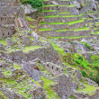 Terrassen von Machu picchu — Stockfoto