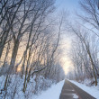 Winter alley — Stockfoto