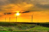 Windmill farm sunset — Stock Photo