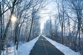 Winterochtend in het park — Stockfoto