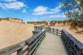 Boardwalk — Stock Photo