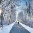 Stock Photo: Winter morning in the park