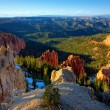Bryce Canyon National Park — Stock Photo #3663393