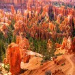 Bryce Canyon — Stock Photo #3733959