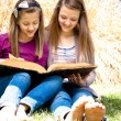 Sisters Reading the Bible — Stockfoto