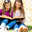 Stock Photo: Sisters Reading the Bible