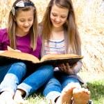 sorelle di lettura della Bibbia — Foto Stock