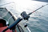 Pêche à la traîne sur le voir — Photo