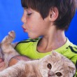 Stock Photo: Boy with cat