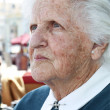 Old lady portrait — Stock Photo #2998681